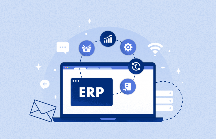 Erp Software Programming